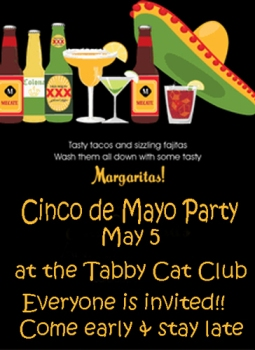 2013-Cinco-de-Mayo-Party-TC