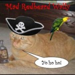 We Arrr Meowin' Like Pirates!