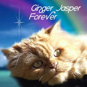 Ginger Jasper, Forever, 2