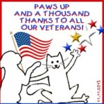 Mancats - Happy Veterans Day