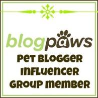 influencer_member