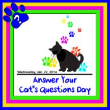 CatQuestionDayBADGE2014