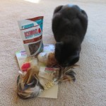 KONG Cat Toy Review