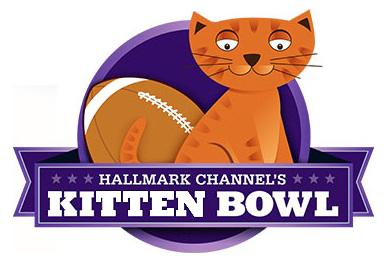 kitten-bowl-2013