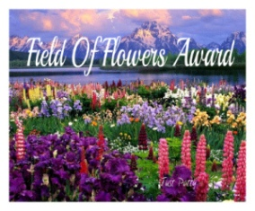 field-of-flowers-award-noodle