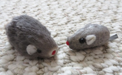 mouses1