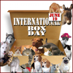 International Box Day!