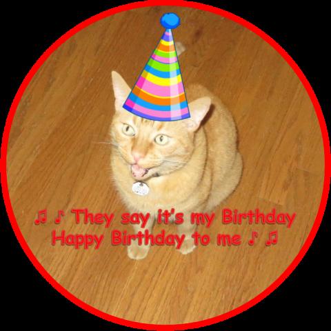 wally-birthday