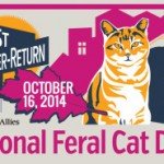 National Feral Cat Day 2014