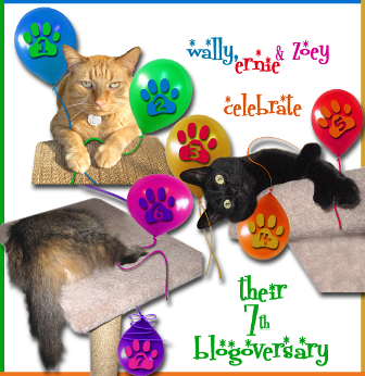 Island Cats Blogoversary ALTERNATE