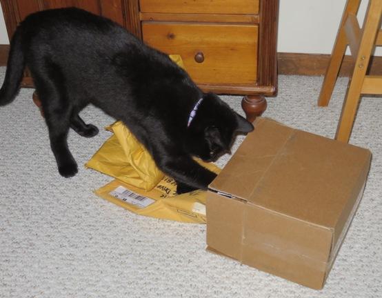 ernie-box-1