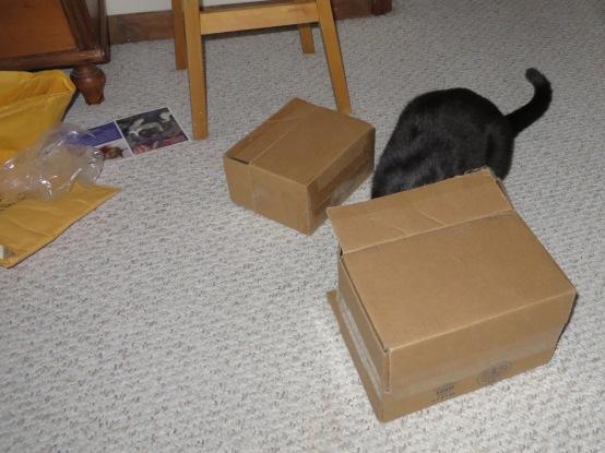 ernie-box-5