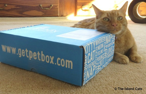 petbox-march-1