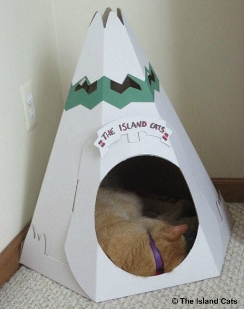 wally-in-teepee