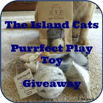 Purrfectplay-giveaway1