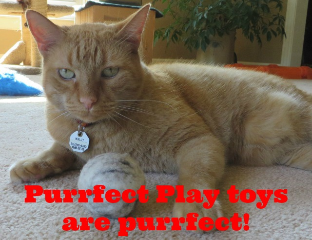 purrfectplay-toys-7