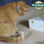PetSafe® Cheese Cat Toy Review & Giveaway