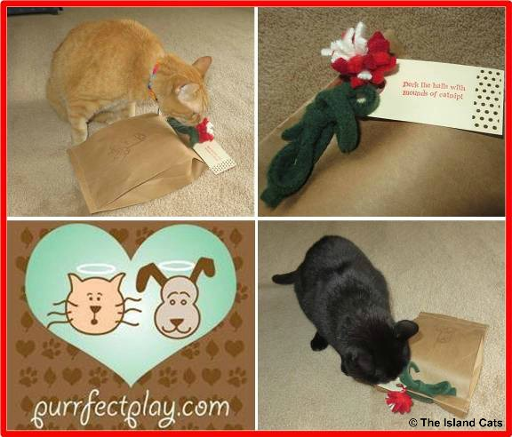 Purrfectplay holiday gift bag for cats