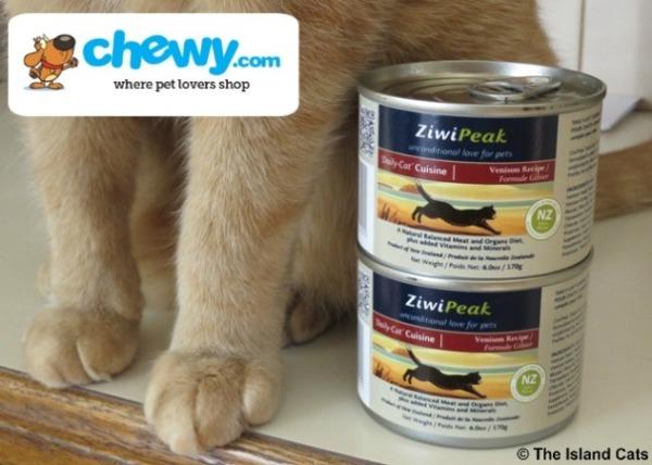 We taste-tested Ziwipeak canned cat food