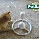 Fun with the PetSafe® Flitter