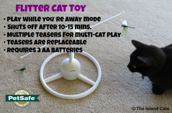 Flitter Cat Toy Features