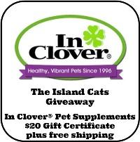 InClover-giveaway
