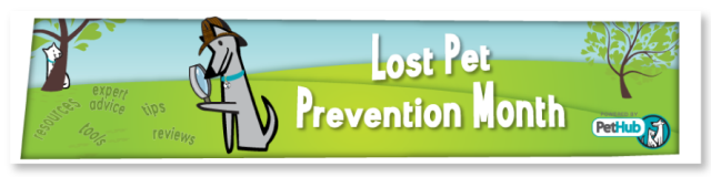 PetHub Lost Pet Prevention Banner