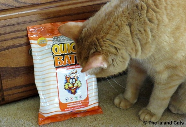 I'm checking out these Quick Bath cat wipes