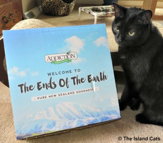 Ernie with Addiction pet foods