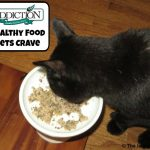 Addiction Pet Food - Healthy Food Pets Crave