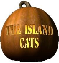The Island Cats Pumpkin