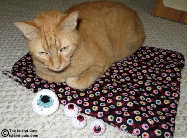 These eyeballs are purrfect for whapping