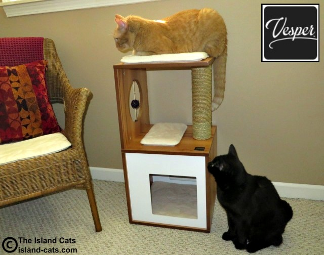 Vesper Cat Furniture For The Discerning Cat And Cat Lover The