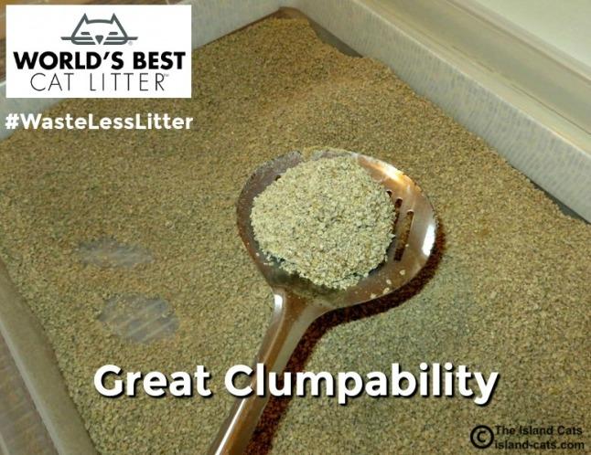 World's Best Cat Litter clumps well #WasteLessLitter