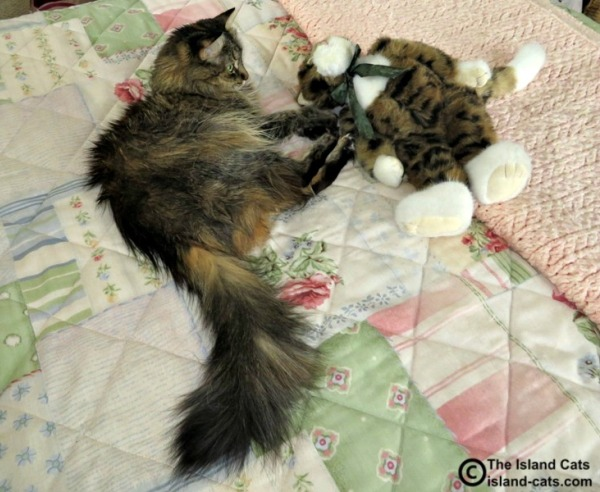 Zoey loves her baby