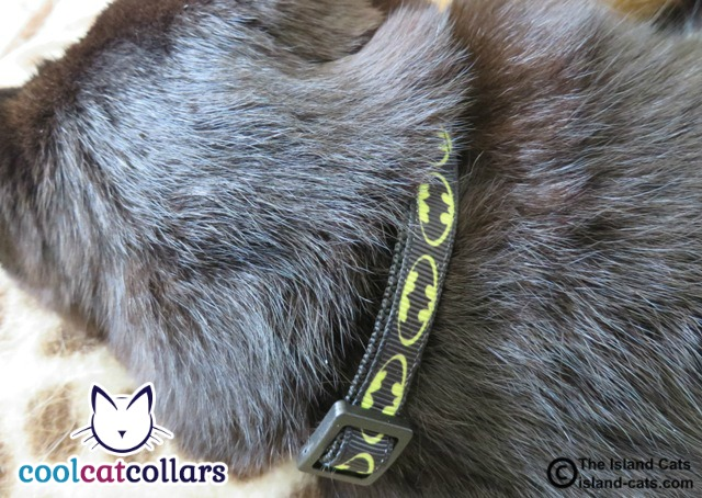 Batman Cool Cat Collar