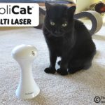 FroliCat® Multi Laser Review and Giveaway