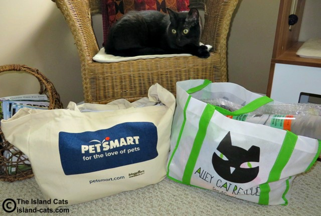 The mom is home from BlogPaws
