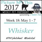 Whisker #PMTphotohunt