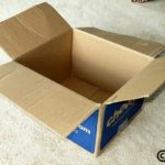 Cats and Boxes on International Box Day