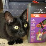 Jackson Galaxy™ Cat Products from Petmate® Review and Giveaway