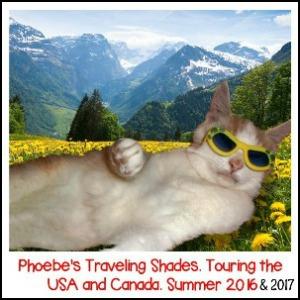 Phoebe Traveling Shades Tour