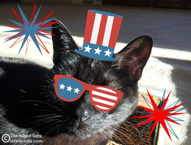 I'm Patriotic Ernie
