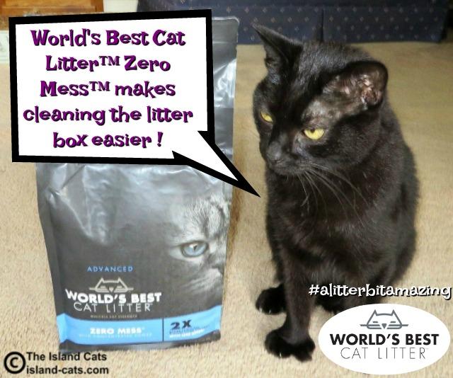 World's Best Cat Litter Zero Mess makes cleaning the litter box easier