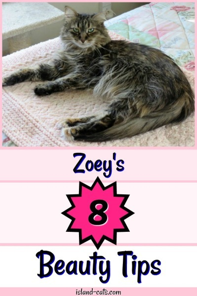 Zoey's Beauty Tips