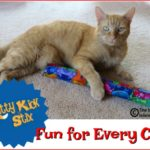 Kitty Kick Stix™ is Fun for Every Cat!