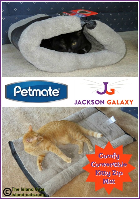 Petmate Jackson Galaxy Kitty Zip Mat graphic