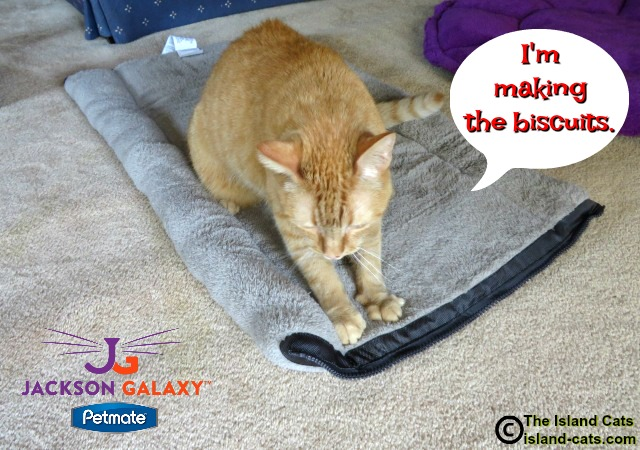 The Kitty Zip Mat is purrfect for making biscuits on