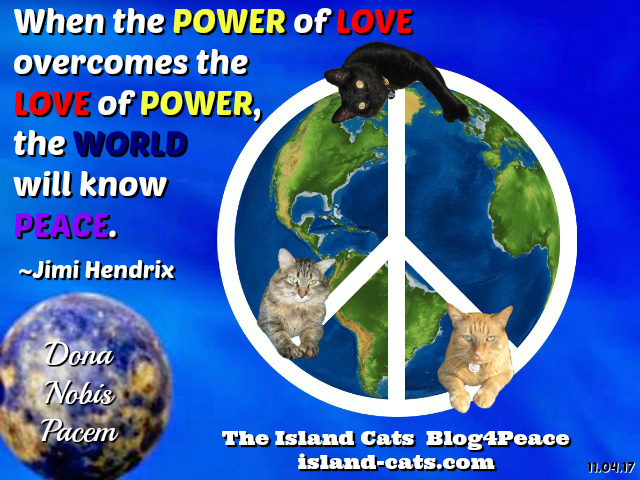 Island Cats Peace Globe - Blog4Peace
