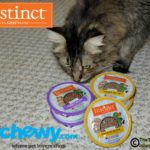 Get Your Teeth into Instinct® Grain-Free Minced Cat Food #ChewyInfluencer